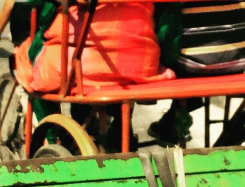 Old Delhi Rickshaw